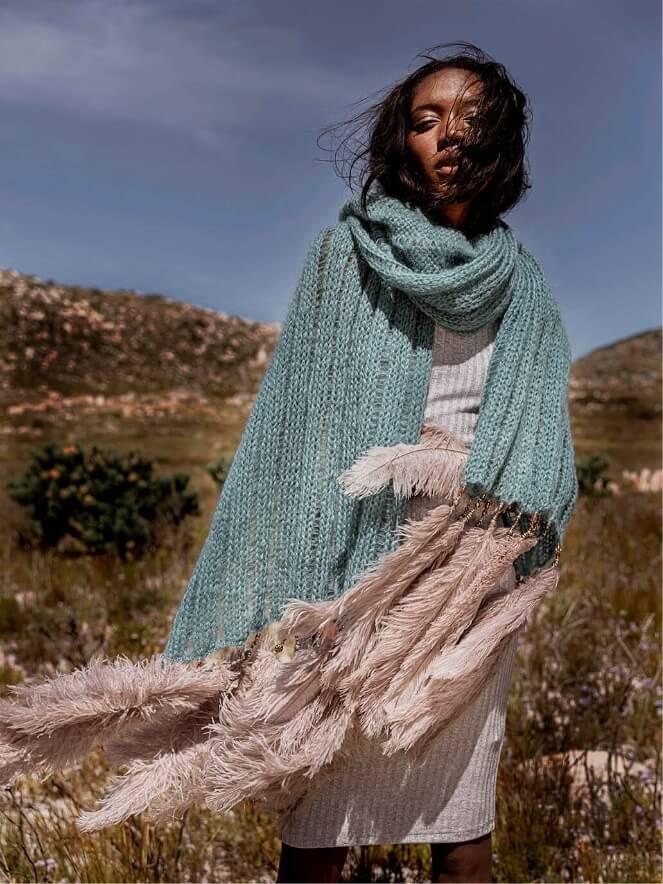 Karoo Desert Flowers 7